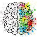 Como a neurociência afeta os comportamentos de compra dos clientes